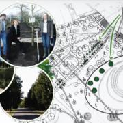 Unser Jubiläumsprojekt: Bäume pflanzen zur Verbesserung des Klimas.